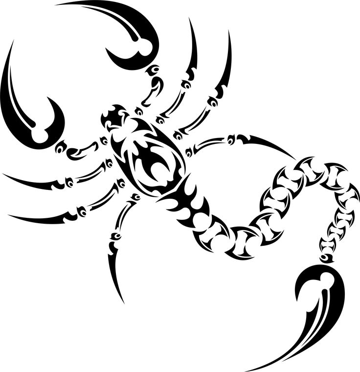 idee tattoo feminin scorpion pour tatouer