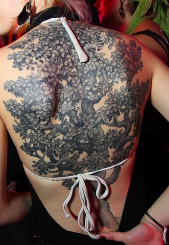 photo tattoo feminin grand arbre dos entier