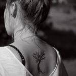 tatouage femme petit arbre haut du dos sans racine