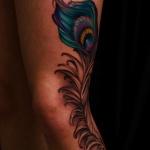 exemple tatouage plume de paon femme cuisse