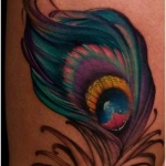 photo tattoo feminin plume de paon cuisse