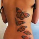 modele tatouage 5 papillons monarque dans le dos cote droit