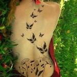tatouage nuee de papillon dos entier femme