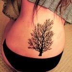 bas du dos femme a tatouer motif arbre sans feuille