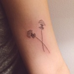 2 plantes pissenlits croisees femme a tatouer